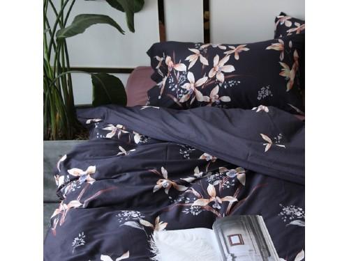 """Постельное белье египетский хлопок """"Полонез"""" 411036 от ALLTEX в интернет-магазине PannaTeks"""