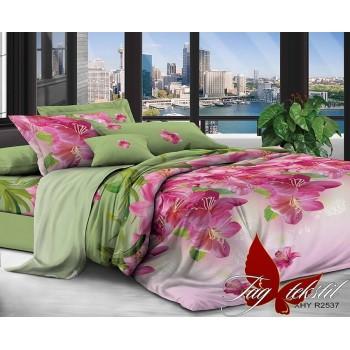 Постельное белье поликоттон XHY2537 XHY2537 от TAG tekstil в интернет-магазине PannaTeks
