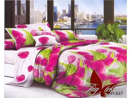 Постельное белье поликоттон XHY647 XHY647 от TAG tekstil в интернет-магазине PannaTeks